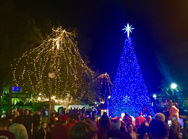 LIGHT UP MOUNT DORA SCHEDULE FOR NOV. 24   MOUNT DORA BUZZ